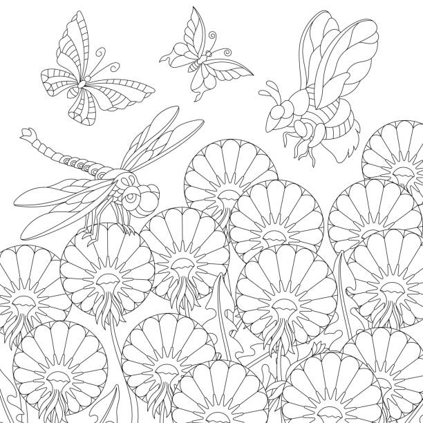 411 Bee Coloring Pages Illustrations Clip Art Istock