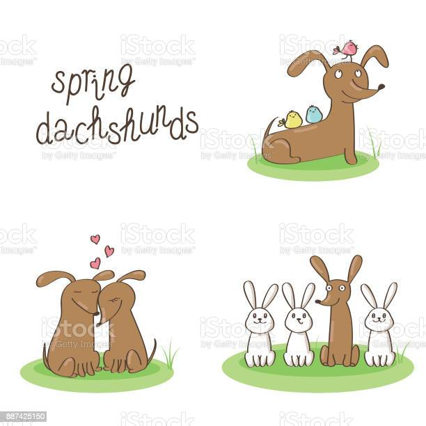 Spring dachshunds vector id887425150?b=1&k=6&m=887425150&s=612x612&h=qszmjznqrwgtt6a gfjmat1qt77ts tqaplceauy8n0=