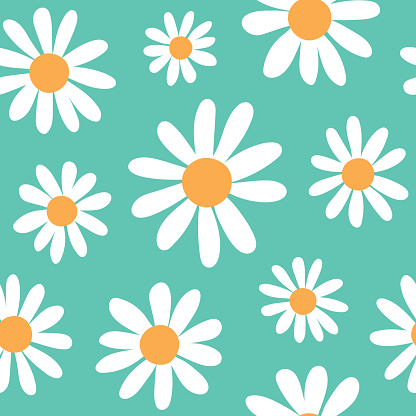 Spring daisies floral retro pattern.  Large scale daisy / chamomile flowers on mint teal green / blue. Trendy bohemian style girly illustration print.