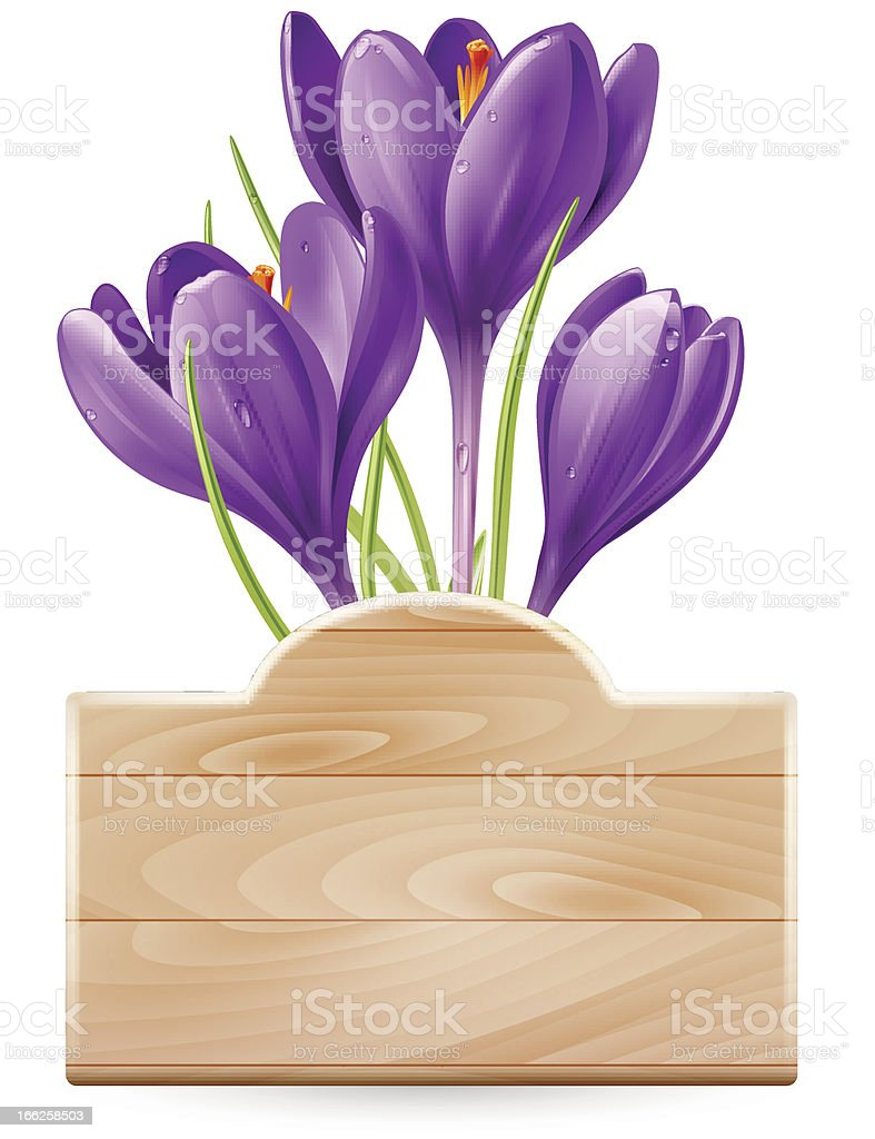 Spring design royalty-free spring design stock vector art & more images of beauty in nature