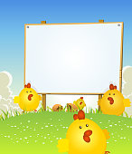 Vector illustration of cartoon happy march and april cute easter chicken jumping in the grass on a spring landscape background with wooden blank sign for your holidays message. Vector eps and high resolution jpeg included