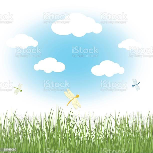 Spring field with dragonflies vector id165769080?b=1&k=6&m=165769080&s=612x612&h=tokj2rzhnr73v8m0sm 9nbnqrrq2k vtubyqxubzmvm=