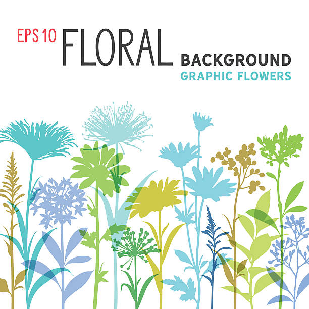 spring floral background and border with wildflowers, branches and stems - wildflowers stock illustrations, clip art, cartoons, & icons