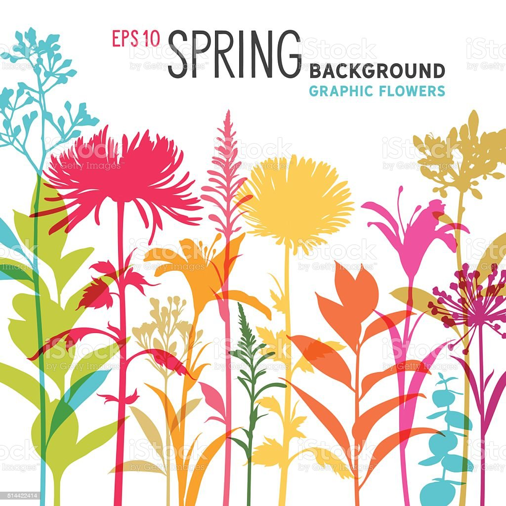 Spring Floral Background and Border with Wildflowers, Branches and Stems vektorkonstillustration