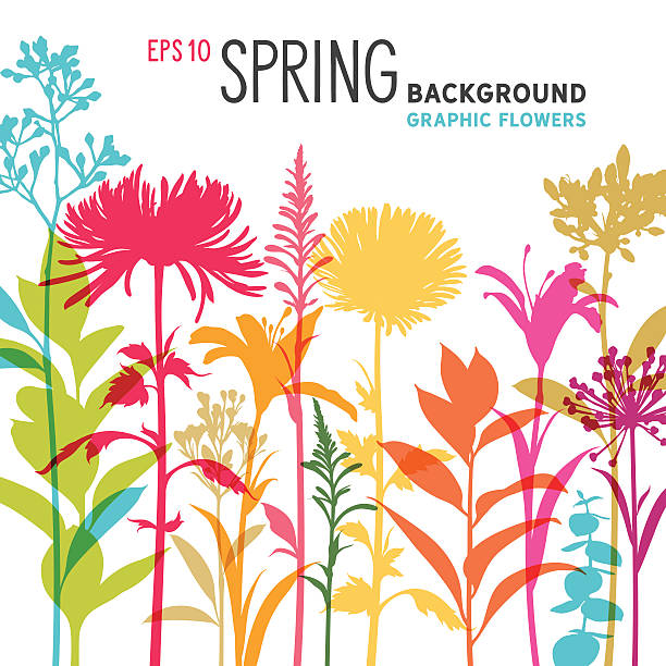 Spring Floral Background and Border with Wildflowers, Branches and Stems​​vectorkunst illustratie