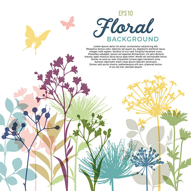 Royalty Free Wild Flowers Clip Art Vector Images Illustrations