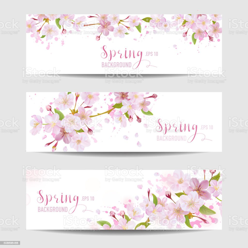Spring Flower Banner Set - Cherry Blossom Tree vector art illustration