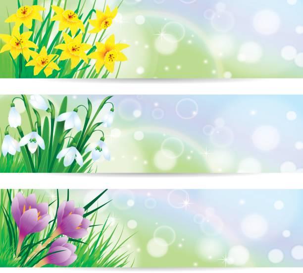Frühling Blumen Banner – Vektorgrafik