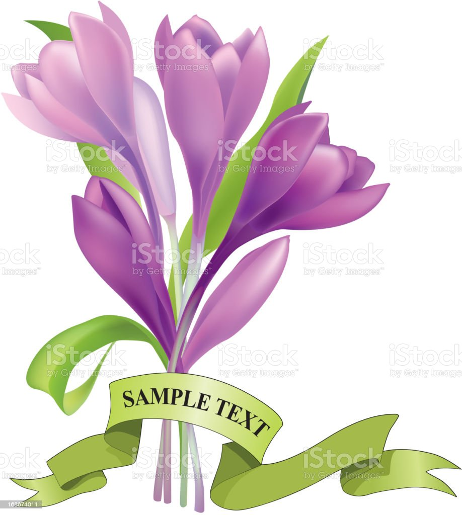 Spring flower bouquet with green ribbon royalty-free stock vector art