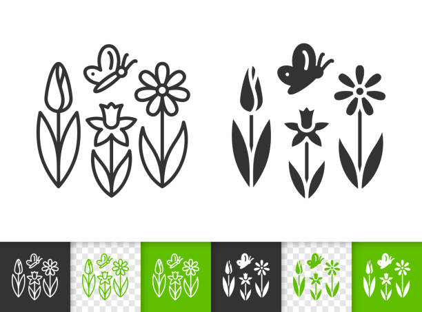 Spring Flower butterfly simple line vector icon Flower black linear and silhouette icons. Thin line sign of spring. Butterfly outline pictogram isolated on white, green, transparent background. Vector Icon shape. Spring grass simple symbol closeup daffodil stock illustrations