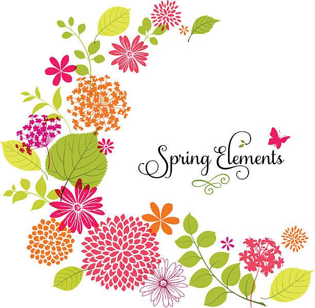ilustrações de stock, clip art, desenhos animados e ícones de design de flores de primavera com copyspace, em branco - flower white background