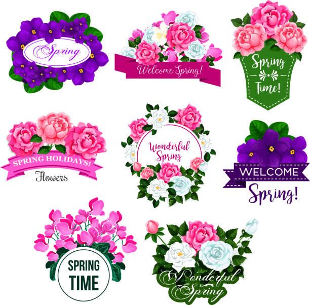 frühling blumen rahmen symbol mit rose, krokus, pfingstrose - alpenveilchen stock-grafiken, -clipart, -cartoons und -symbole