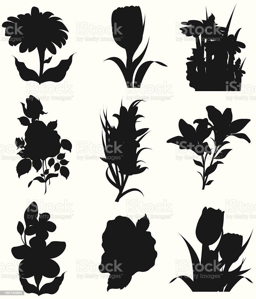 Spring Flower Silhouette royalty-free stock vector art