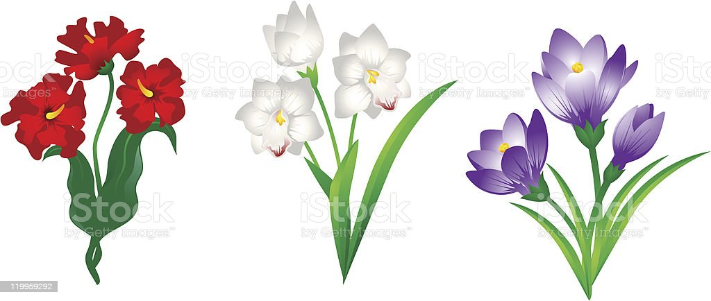 Spring flower royalty-free stock vector art