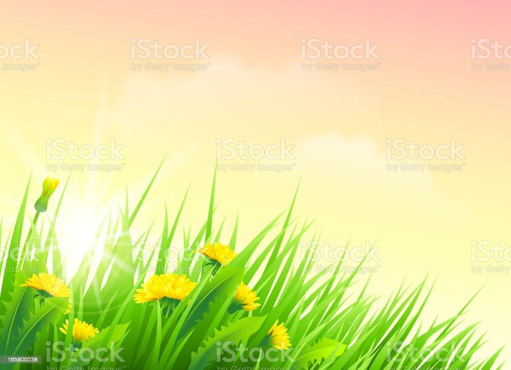 Spring flower - Royalty-free Aangelegd vectorkunst