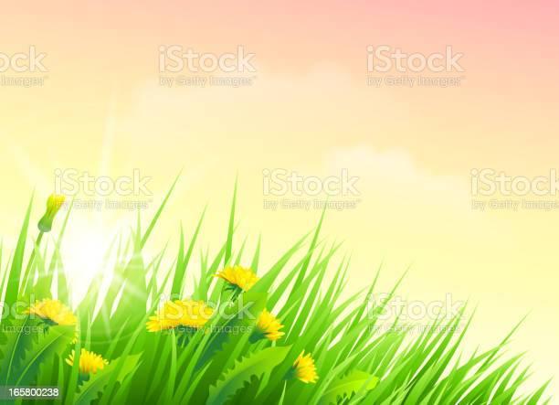 Spring Flower Stockvectorkunst en meer beelden van Aangelegd