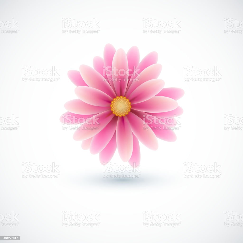 Spring flower vector art illustration