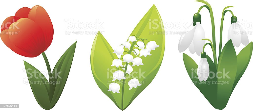 Spring flower royalty-free spring flower stock vector art & more images of beauty