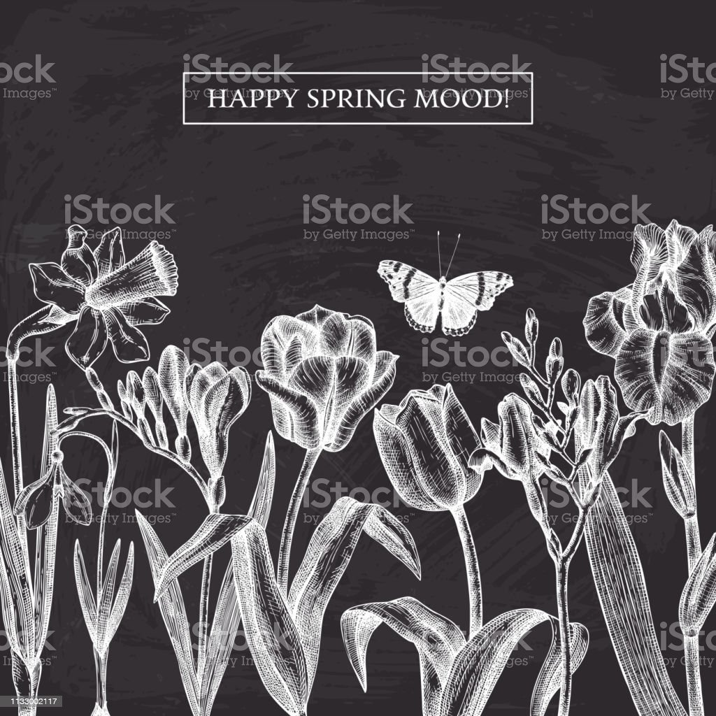 Spring flowers and trees design. Floral elements, buds, leaves...