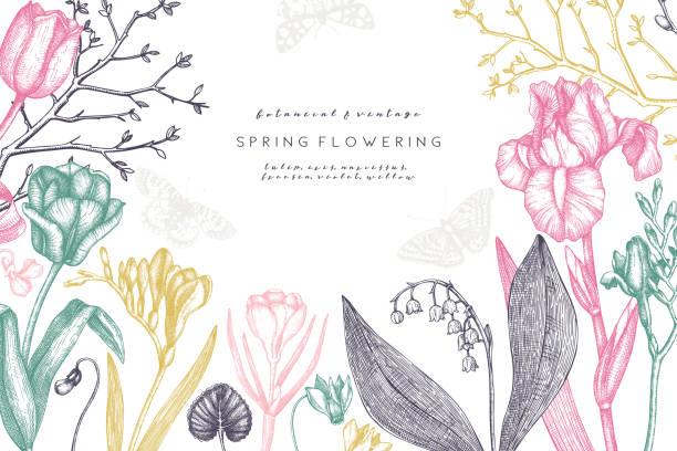 frühlingsblumen und bäume gestalten. - alpenveilchen stock-grafiken, -clipart, -cartoons und -symbole