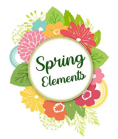 Spring flowers bright colors botanical design elements vector.