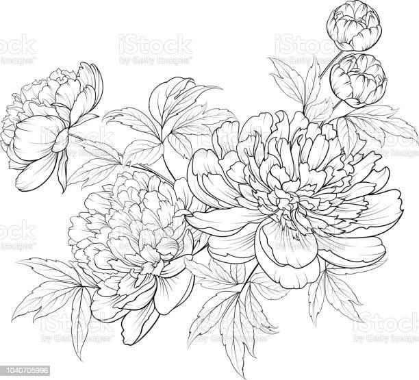Spring flowers bouquet of contour style flower garland vector id1040705996?b=1&k=6&m=1040705996&s=612x612&h=b8e0lfarsk4iidyk7lozetvcmr4x8xsikfkrngiiw s=