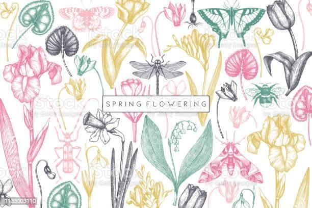 Spring flowers design vector id1133003110?b=1&k=6&m=1133003110&s=612x612&h=btu2vseqg5vjglrawtndjig5rbv1h9le7ctx4ja7wxk=