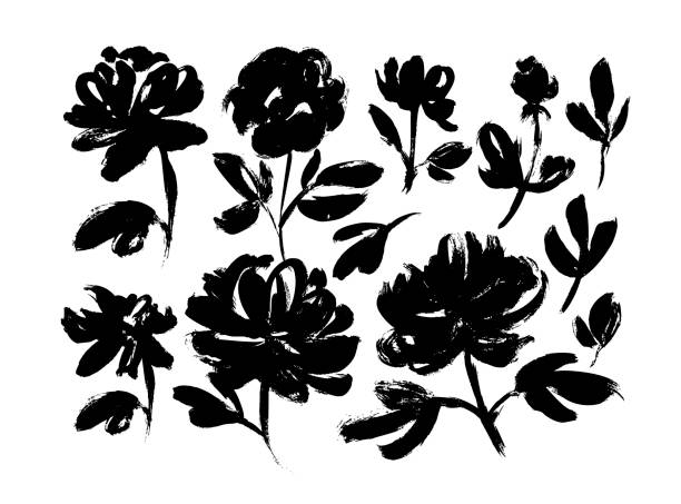 Spring flowers hand drawn vector set. Roses, peonies, chrysanthemums isolated cliparts. Spring flowers hand drawn vector set. Black ink brush textures. Grunge dry paint brushstrokes on white background. Roses, peonies, chrysanthemums isolated cliparts. Floral drawings collection. flower head stock illustrations