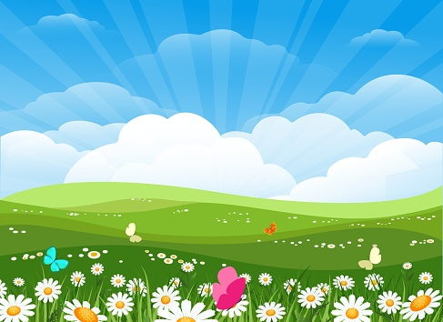 Spring flowers meadow landscape. Green nature background with easter flowering, summer morning backdrop with trees, sky and flower field