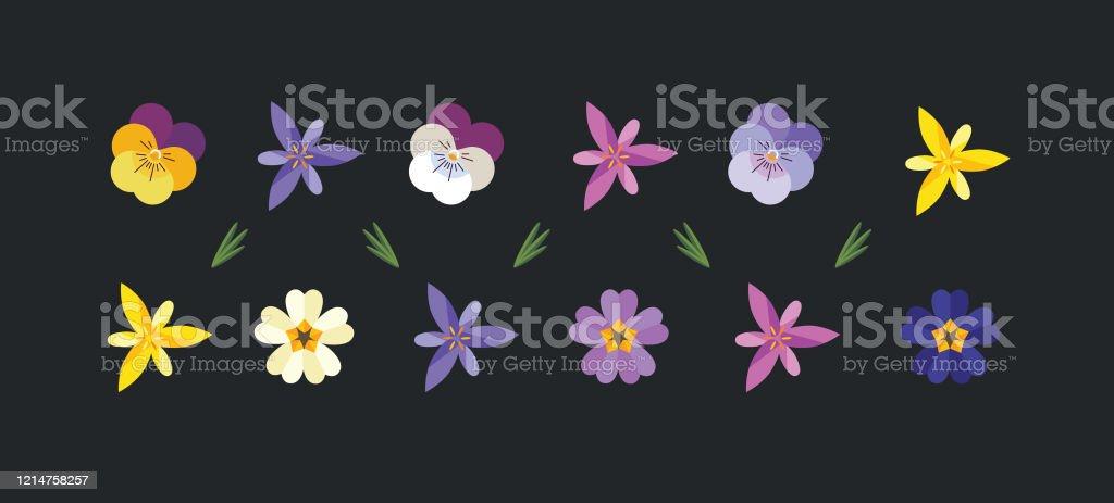 Spring flowers set. - Grafika wektorowa royalty-free (Bratek)