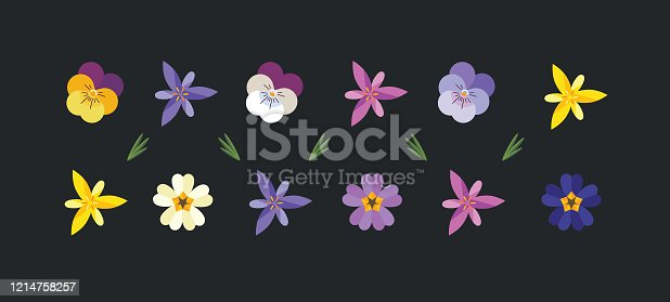 Spring flowers set wallpaper including primrose, crocus and pansy.