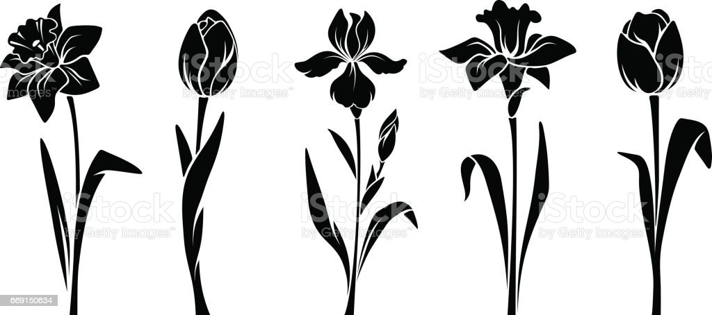 Spring flowers. Vector black silhouettes. vector art illustration