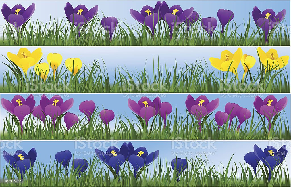 Spring flowers royalty-free stock vector art
