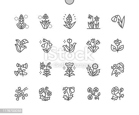 istock Spring flowers Well-crafted Pixel Perfect Vector Thin Line Icons 30 2x Grid for Web Graphics and Apps. Simple Minimal Pictogram 1176703253