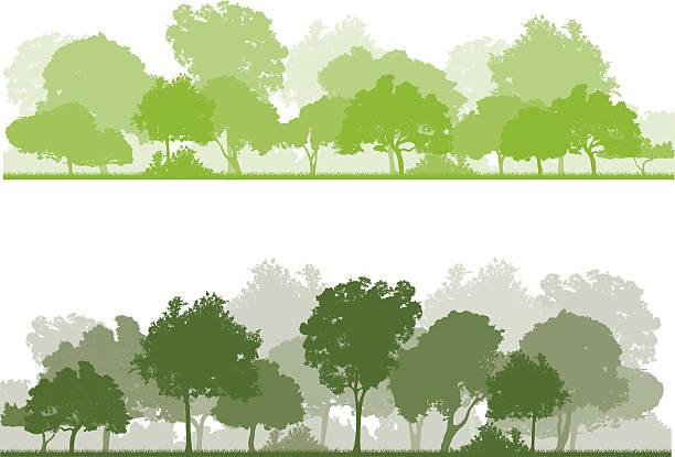 スプリングの森 ベクターアートイラスト