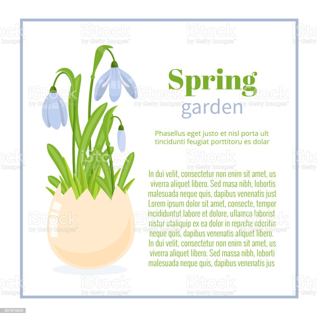 Frühlingsgarten Blume Broschüre Design Hintergründe Vektor