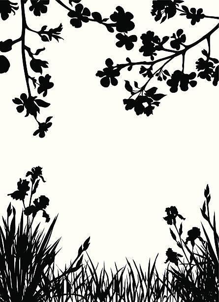 Spring garden Apple blossom silhouettes  iris plant stock illustrations