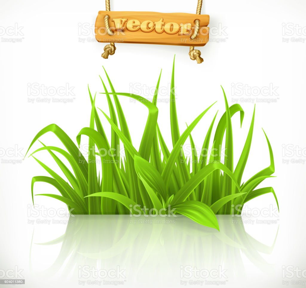 spring grass 3d vector icon stock illustration download image now istock https www istockphoto com vector spring grass 3d vector icon gm924011380 253607137