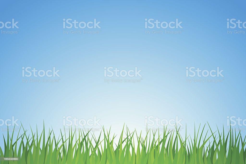 Spring Grass and Sky vector art illustration