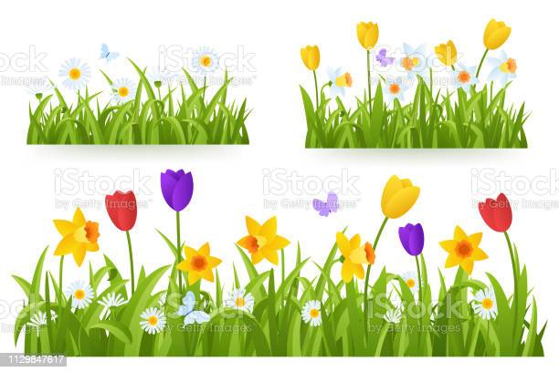 Spring grass border with early spring flowers and butterfly isolated vector id1129847617?b=1&k=6&m=1129847617&s=612x612&h= woefb33jqnad0uaugiuh2iawdtybcmmc1qsjs2kysm=
