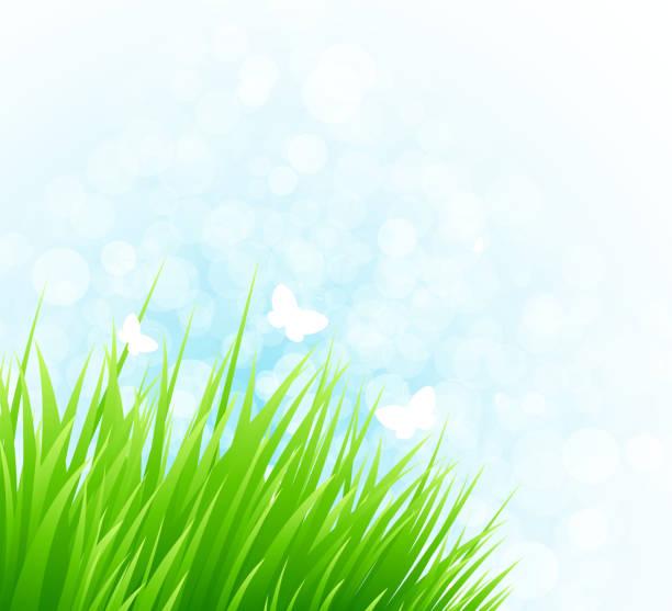 spring gras - farbsättigung stock-grafiken, -clipart, -cartoons und -symbole