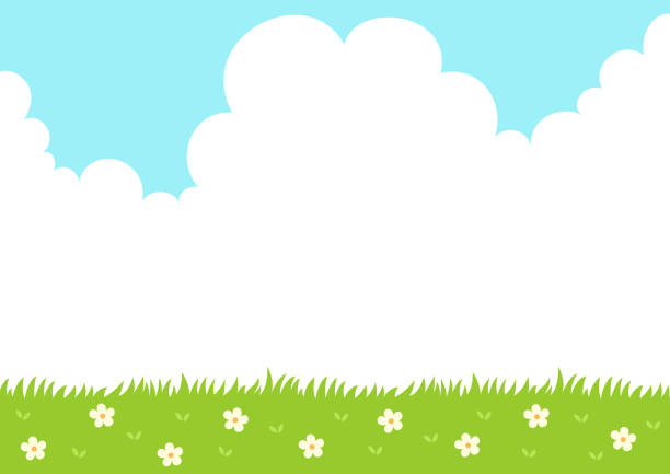 Best Grass Illustrations, Royalty-Free Vector Graphics ...