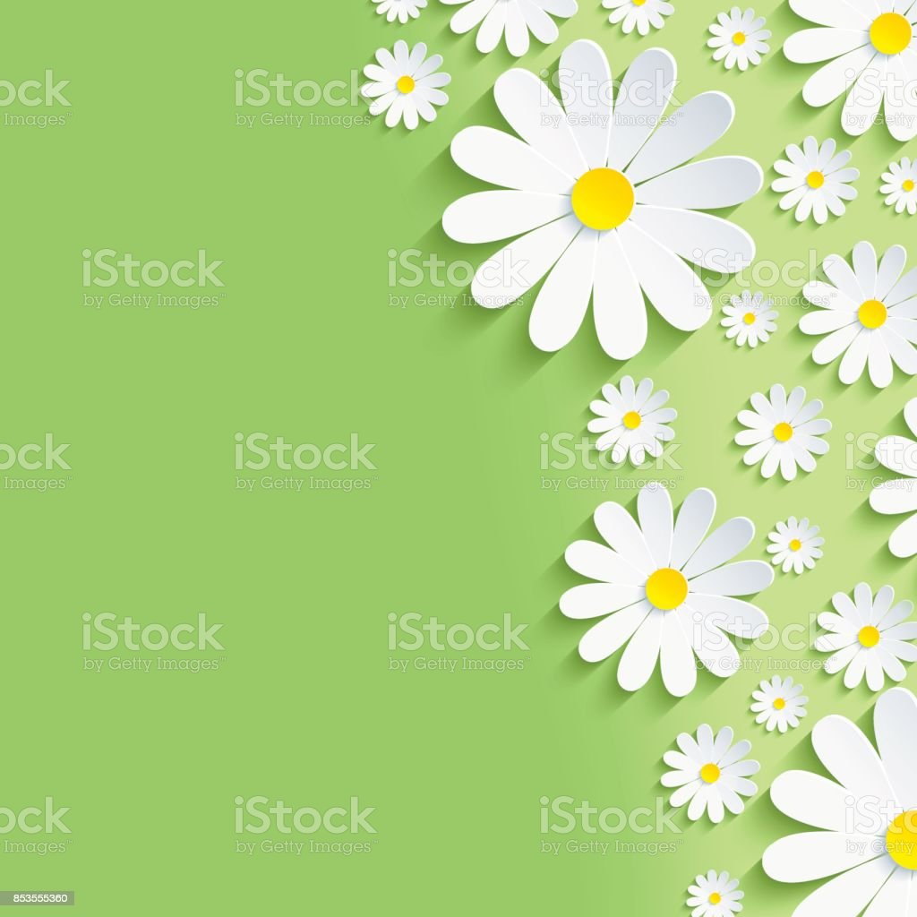 Spring green nature background with white chamomiles