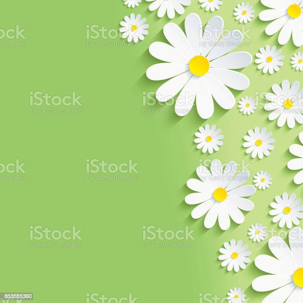 Spring green nature background with white chamomiles vector id853555360?b=1&k=6&m=853555360&s=612x612&h=ji3ii2rt0tbhs8458lv1rsw7lei93s sgbw1vhzvrkq=