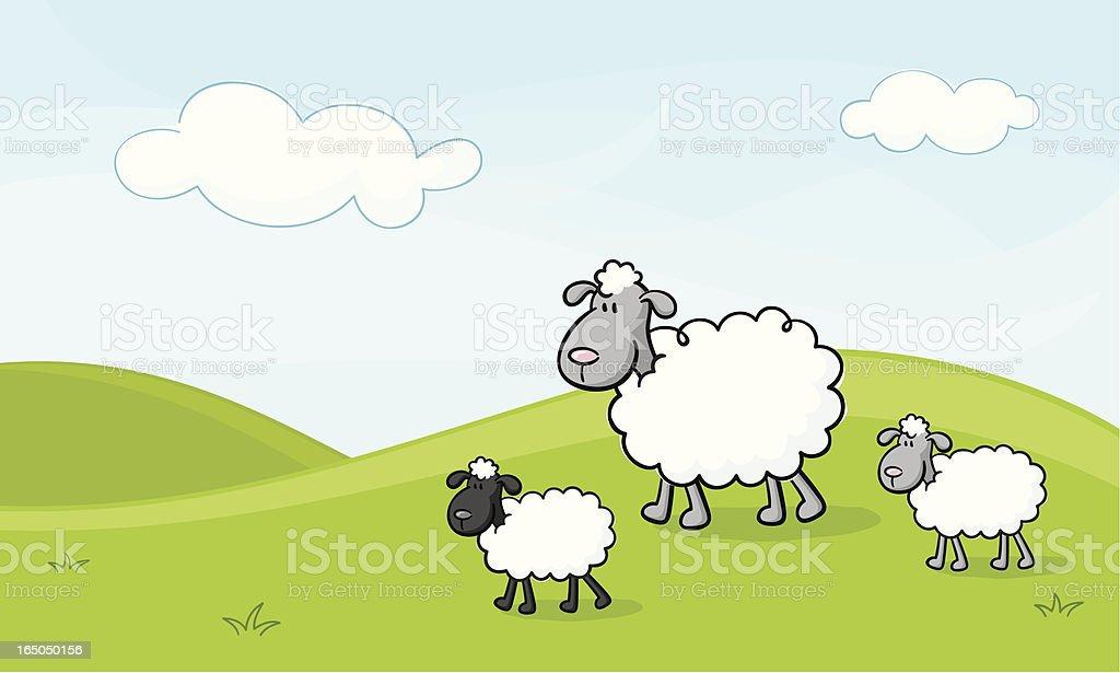 Spring Lambs vector art illustration