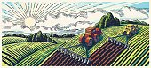 Spring landscape and tractors.