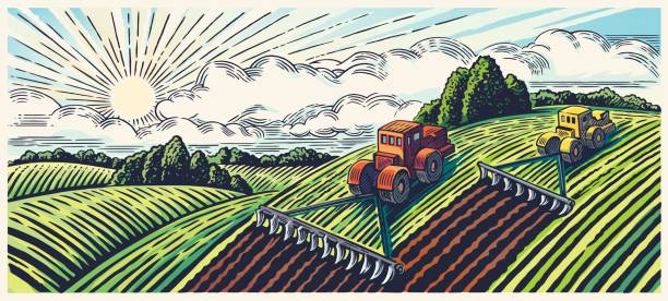Spring landscape and tractors. Spring rural landscape with two tractors in a graphic style, hand-drawn and then converted in vector illustration. harvesting stock illustrations
