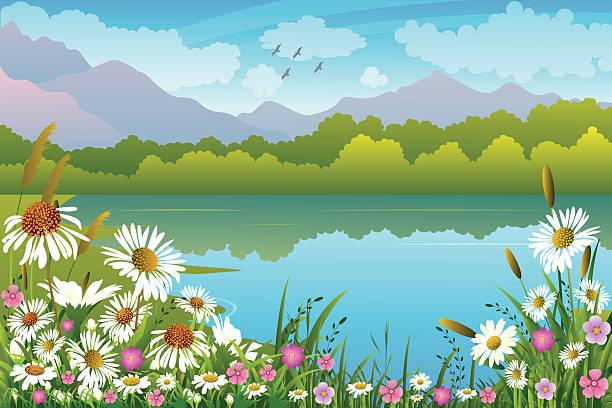 ilustraciones, imágenes clip art, dibujos animados e iconos de stock de paisaje de primavera - lago
