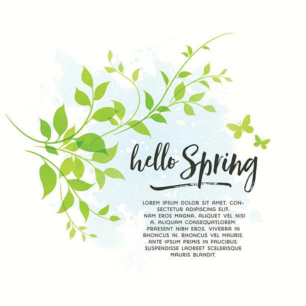 illustrazioni stock, clip art, cartoni animati e icone di tendenza di sfondo di primavera con foglie - farfalla ramo
