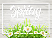Spring lettering with grass and chamomile